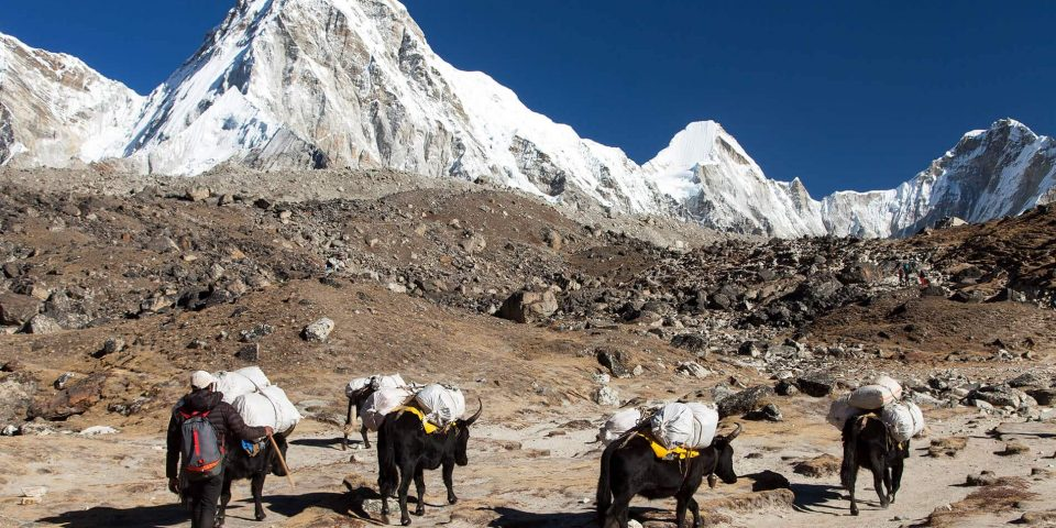 Blue-white-moutains-with-commuting-donkeys