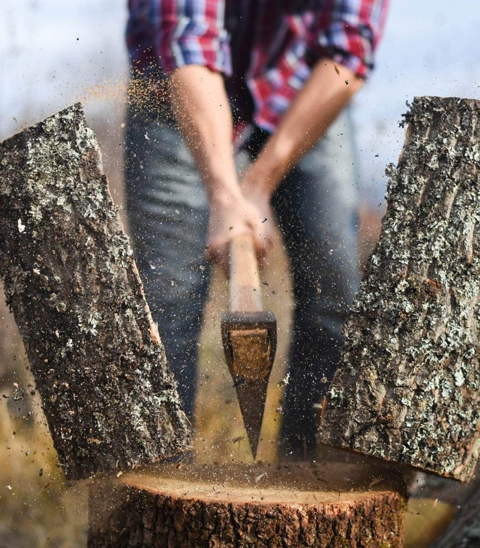Featured image chopping firewood